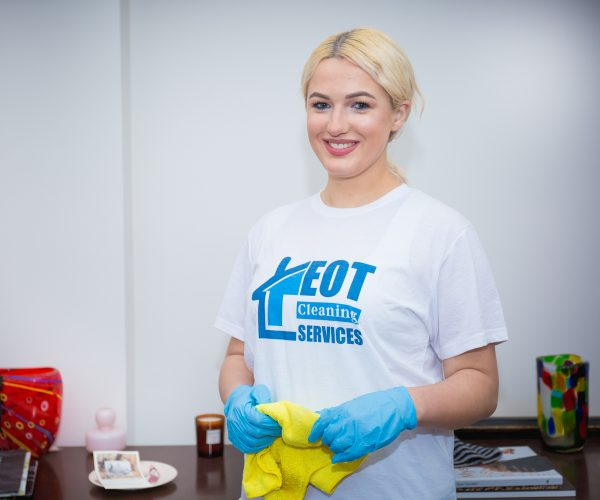 professional cleaning services in London