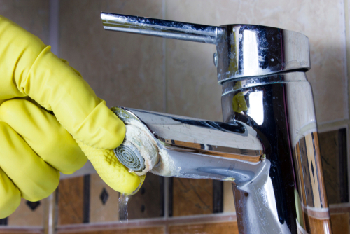 Person cleaning tap for limescale